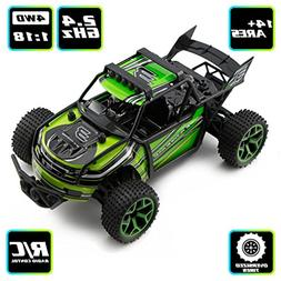 Zhencheng 1/18 Scale Electric 2.4Ghz 4WD Extreme High Speed