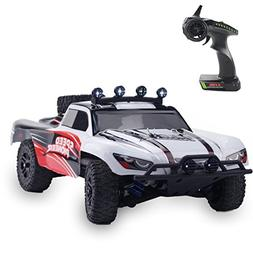 Fistone 1:18 RC Car RTR High Speed Racing Monster Truck 4WD